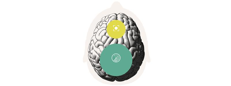 Oticon's BrainHearing Technology